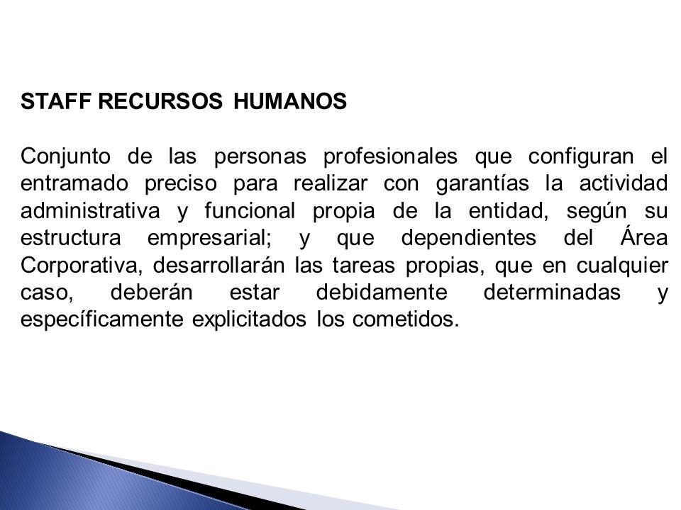 STAFF RECURSOS HUMANOS Conjunto de las personas profesionales que configuran el entramado preciso para realizar con garantías la actividad administrat