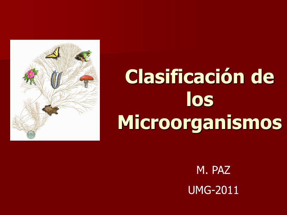 Clasificación de los Microorganismos M. PAZ UMG-2011