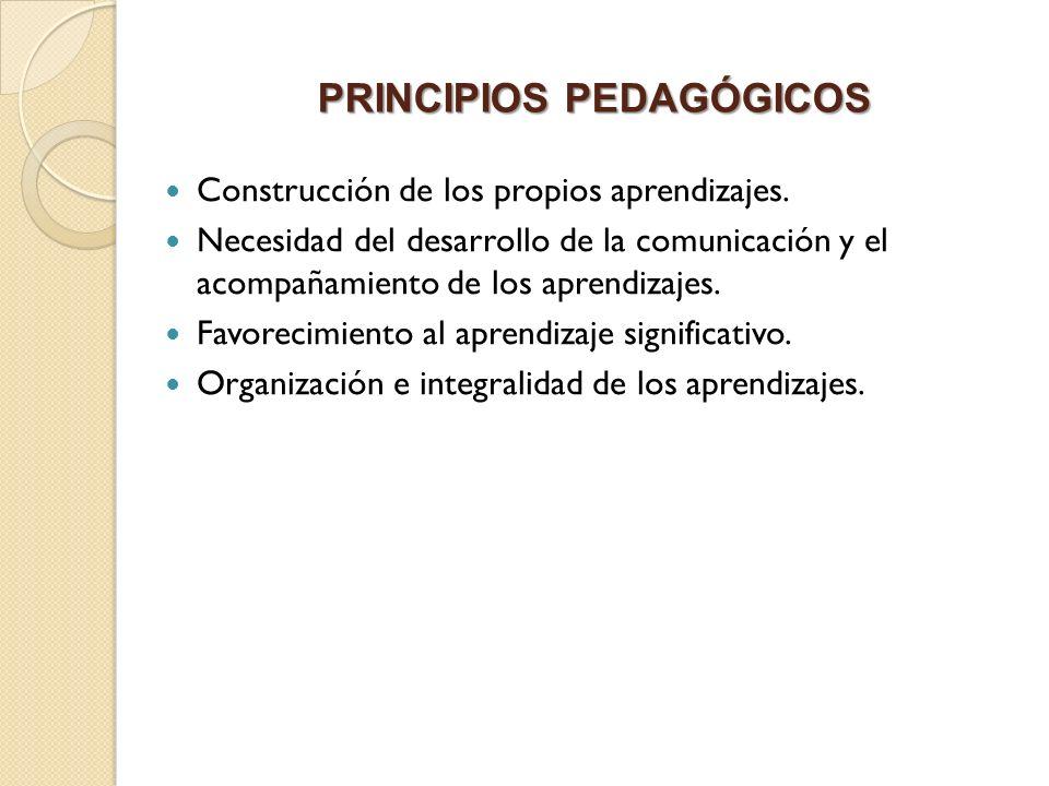 PRINCIPIOS PEDAGÓGICOS Construcción de los propios aprendizajes. Necesidad del desarrollo de la comunicación y el acompañamiento de los aprendizajes.