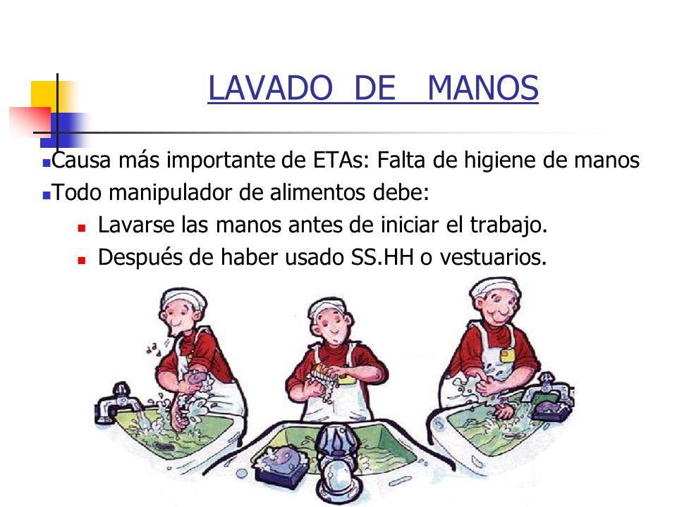 LAVADO DE MANOS Causa más importante de ETAs: Falta de higiene de manos Todo manipulador de alimentos debe: Lavarse las manos antes de iniciar el trab
