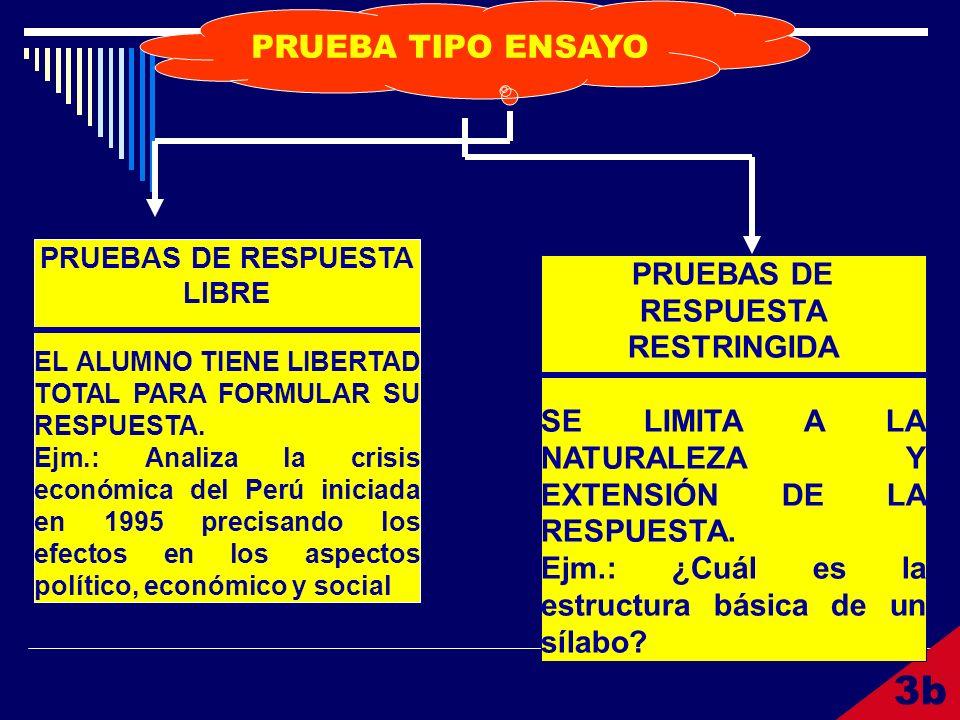 3b PRUEBA TIPO ENSAYO PRUEBAS DE RESPUESTA LIBRE EL ALUMNO TIENE LIBERTAD TOTAL PARA FORMULAR SU RESPUESTA. Ejm.: Analiza la crisis económica del Perú