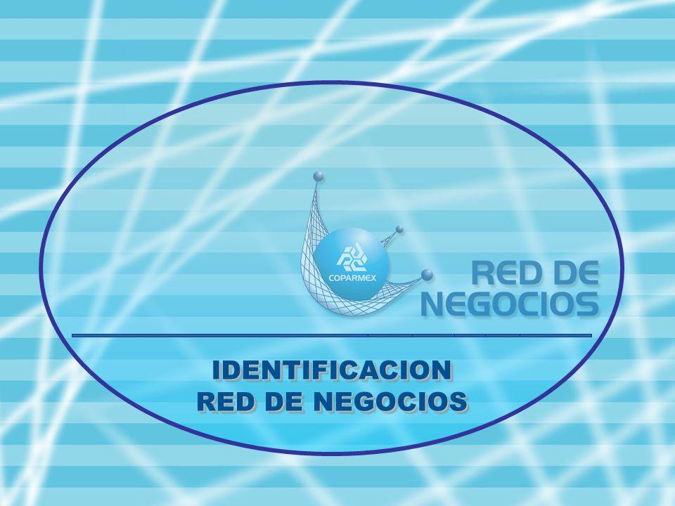 IDENTIFICACION RED DE NEGOCIOS IDENTIFICACION