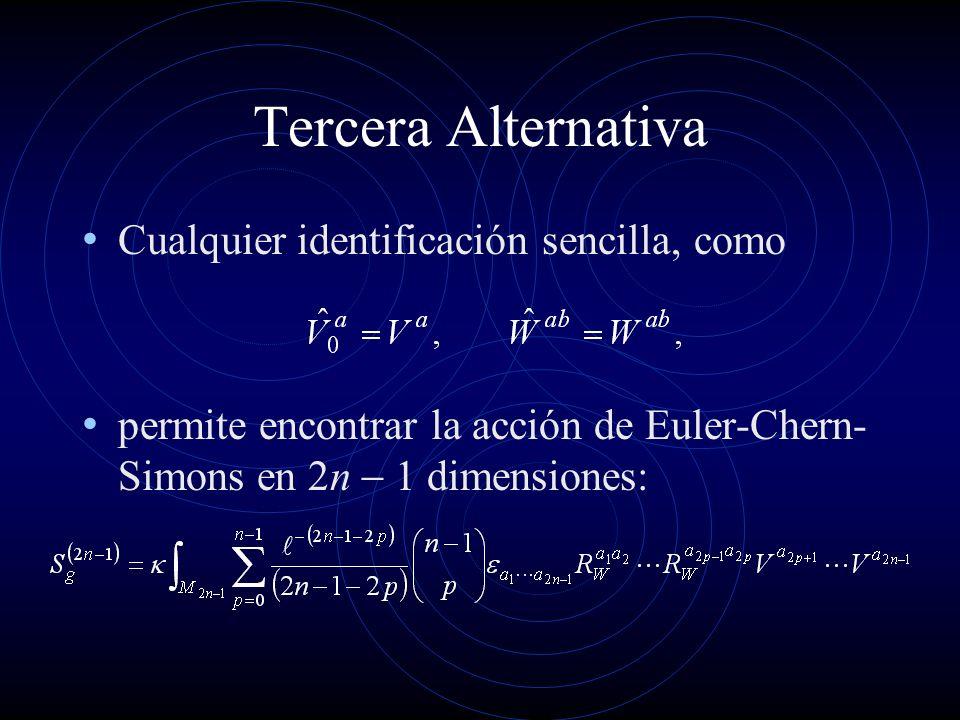 Tercera Alternativa Cualquier identificación sencilla, como permite encontrar la acción de Euler-Chern- Simons en n dimensiones: