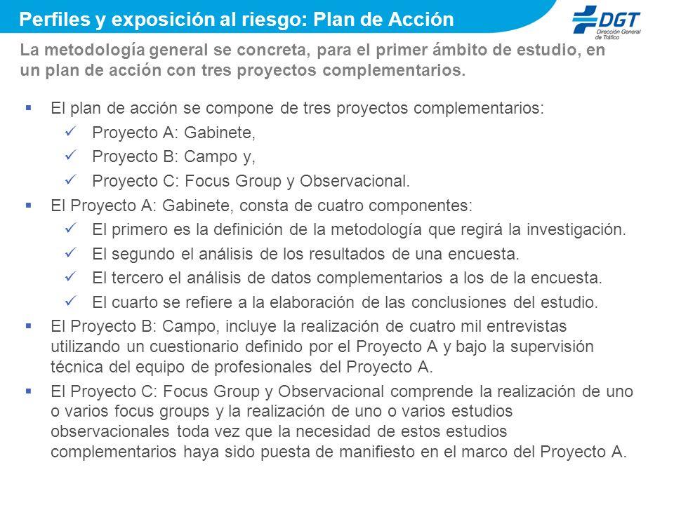 El plan de acción se compone de tres proyectos complementarios: Proyecto A: Gabinete, Proyecto B: Campo y, Proyecto C: Focus Group y Observacional.