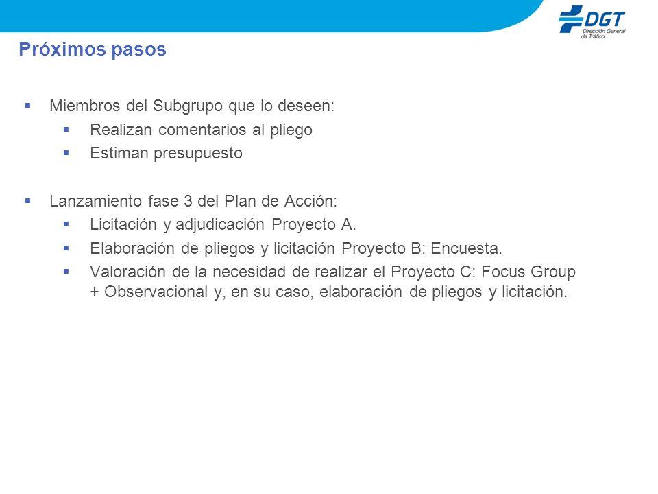 Miembros del Subgrupo que lo deseen: Realizan comentarios al pliego Estiman presupuesto Lanzamiento fase 3 del Plan de Acción: Licitación y adjudicación Proyecto A.