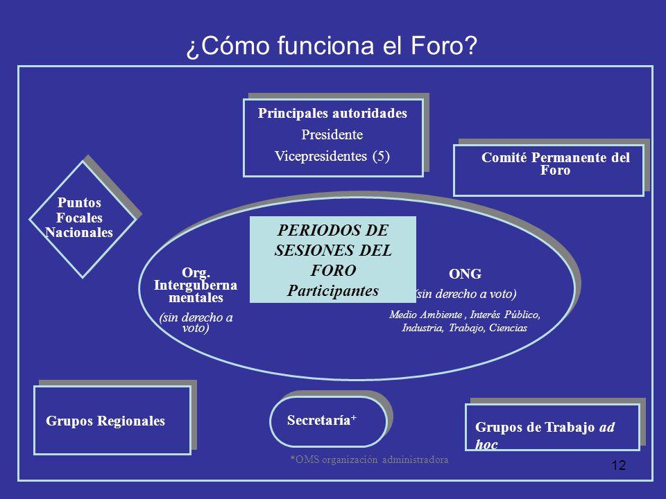 12 ¿Cómo funciona el Foro? Principales autoridades Presidente Vicepresidentes (5) Comité Permanente del Foro Org. Interguberna mentales (sin derecho a