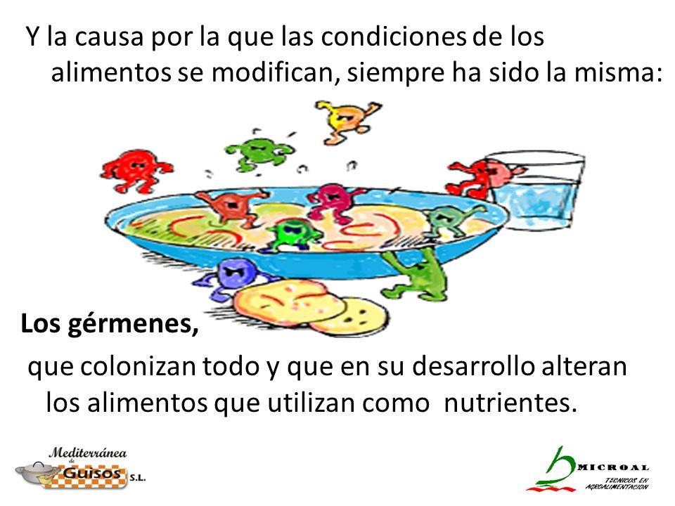 Los gérmenes, que colonizan todo y que en su desarrollo alteran los alimentos que utilizan como nutrientes. Y la causa por la que las condiciones de l