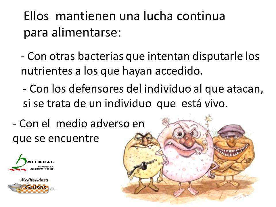 - Con otras bacterias que intentan disputarle los nutrientes a los que hayan accedido. - Con los defensores del individuo al que atacan, si se trata d