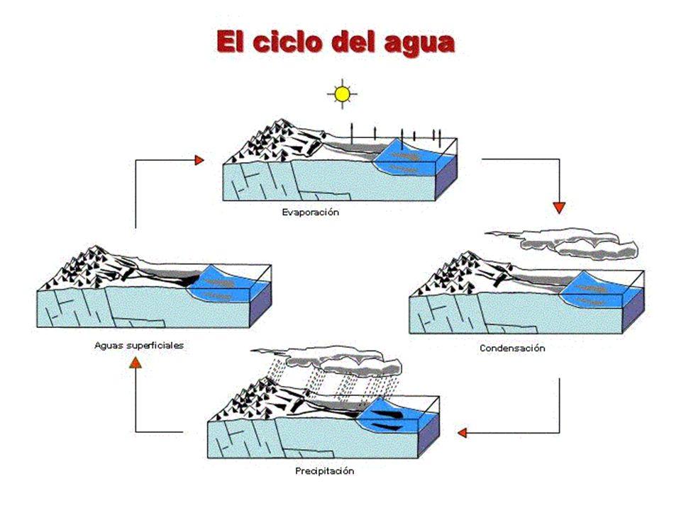 El movimiento más importante que realiza el agua del mar son las corrientes marinas, desplazamientos de grandes masas de agua de unos puntos del planeta a otros.