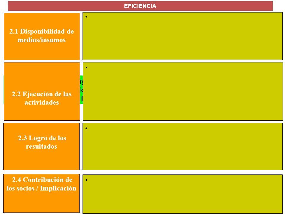 MANUAL FORMULACIÓN DE PROYECTOS PARA LA COOPERACIÓN INTERNACIONAL 2.1 Disponibilidad de medios/insumos EFICIENCIA El hecho de que se hayan obtenido lo