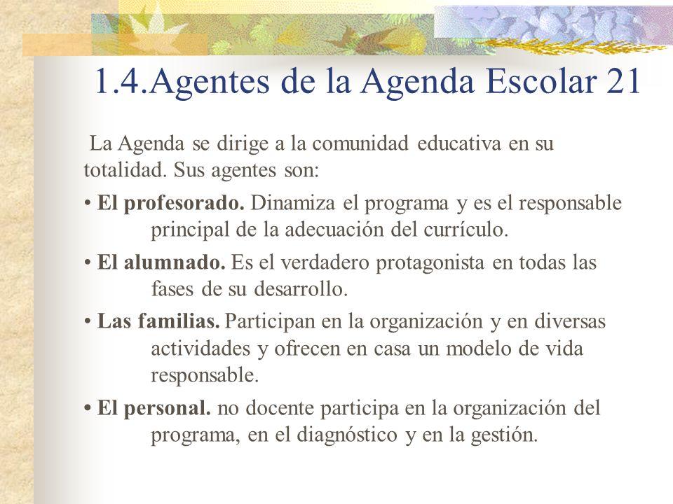 La Agenda se dirige a la comunidad educativa en su totalidad. Sus agentes son: El profesorado. Dinamiza el programa y es el responsable principal de l