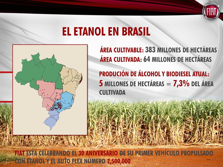 ÁREA CULTIVABLE: 383 MILLONES DE HECTÁREAS ÁREA CULTIVADA: 64 MILLONES DE HECTÁREAS PRODUCIÓN DE ÁLCOHOL Y BIODIESEL ATUAL: 5 MILLONES DE HECTÁREAS = 7,3% DEL ÁREA CULTIVADA FIAT ESTÁ CELEBRANDO EL 30 ANIVERSARIO DE SU PRIMER VEHÍCULO PROPULSADO CON ETANOL Y EL AUTO FLEX NÚMERO 2,500,000 EL ETANOL EN BRASIL