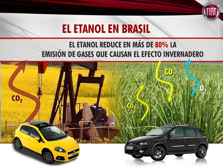 EL ETANOL REDUCE EN MÁS DE 80% LA EMISIÓN DE GASES QUE CAUSAN EL EFECTO INVERNADERO O2O2 O2O2 CO 2 EL ETANOL EN BRASIL