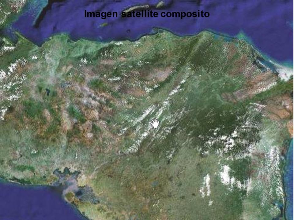 la Futura de Madera en Honduras Para encontrar las demandas futuras para los productos de madera, necesitamos manejar nuestros recursos del bosque producir muchas más madera.