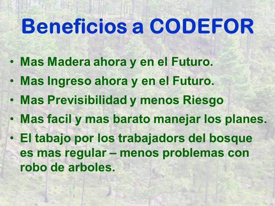 Necesitamos de CODEFOR Aprobación pronta para el Plan Científico de la Administración del Bosque de Hacienda Guadelupe.