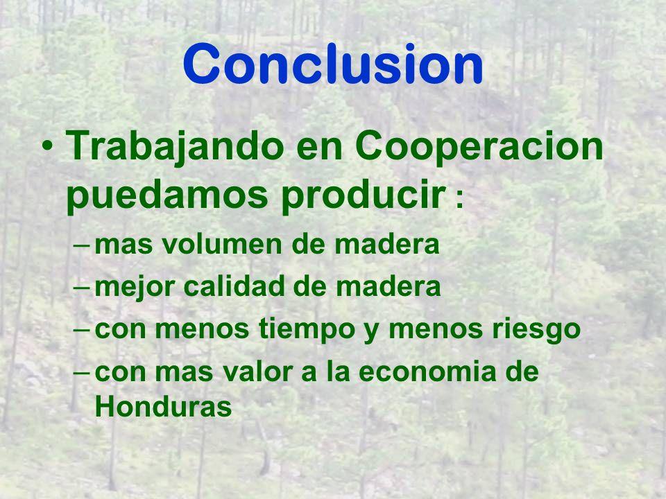 Conclusion Trabajando en Cooperacion puedamos producir : –mas volumen de madera –mejor calidad de madera –con menos tiempo y menos riesgo –con mas valor a la economia de Honduras