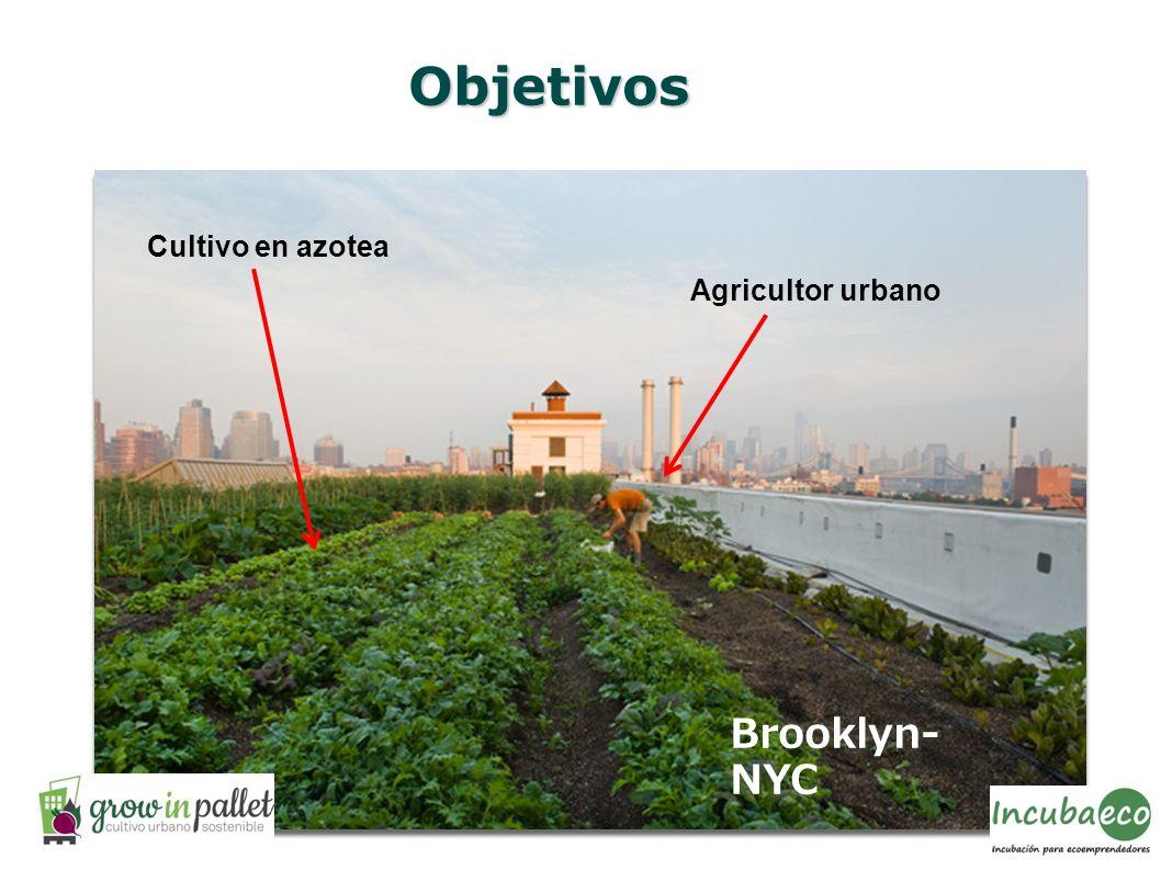 Objetivos Agricultor urbano Cultivo en azotea Brooklyn- NYC