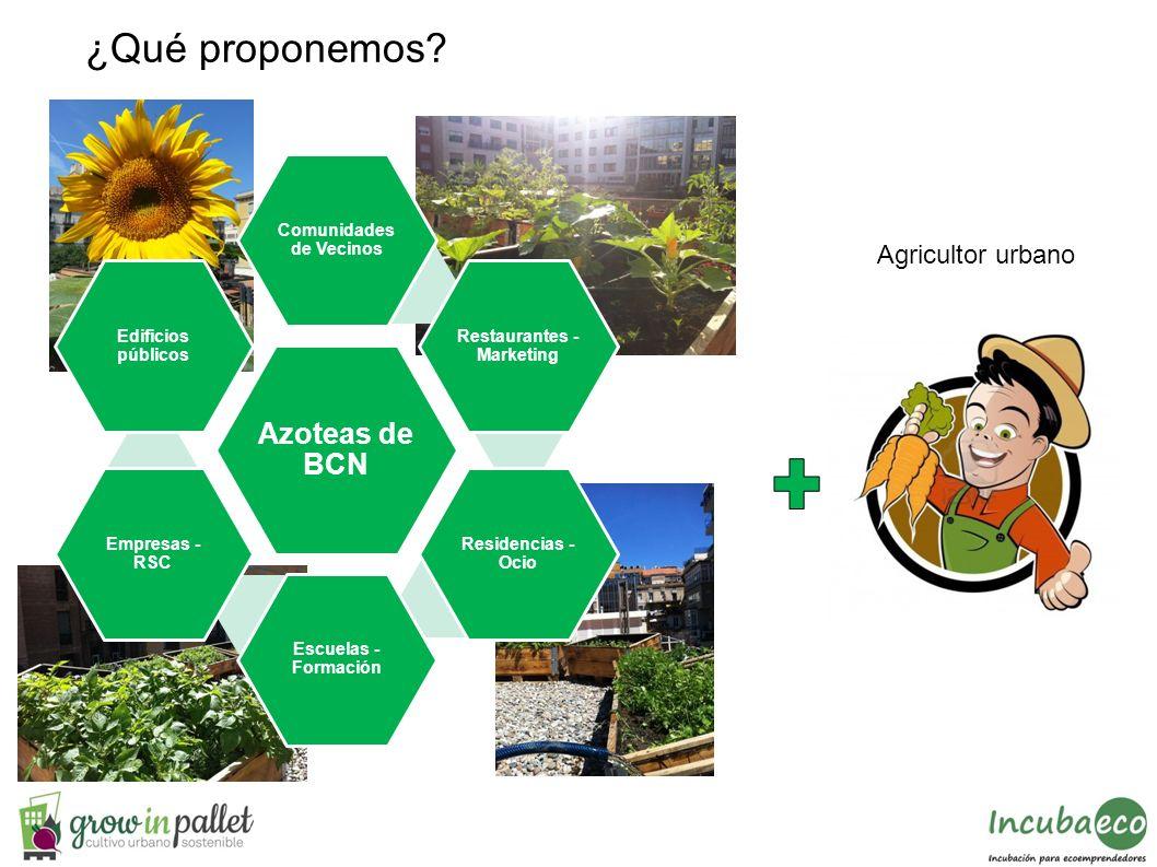 ¿Qué proponemos? Agricultor urbano Azoteas de BCN Comunidades de Vecinos Restaurantes - Marketing Residencias - Ocio Escuelas - Formación Empresas - R