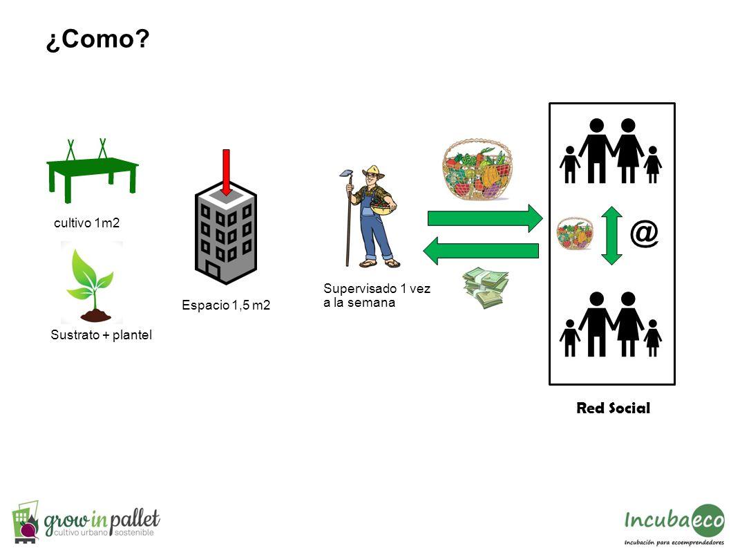 cultivo 1m2 Espacio 1,5 m2 Supervisado 1 vez a la semana ¿Como? Red Social @ Sustrato + plantel
