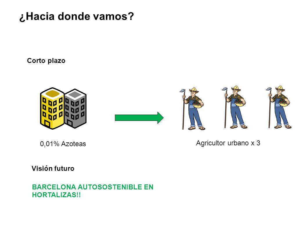 Corto plazo 0,01% Azoteas ¿Hacia donde vamos? Agricultor urbano x 3 Visión futuro BARCELONA AUTOSOSTENIBLE EN HORTALIZAS!!