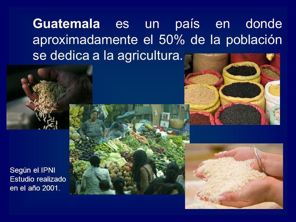 Guatemala es un país en donde aproximadamente el 50% de la población se dedica a la agricultura. Según el IPNI Estudio realizado en el año 2001.