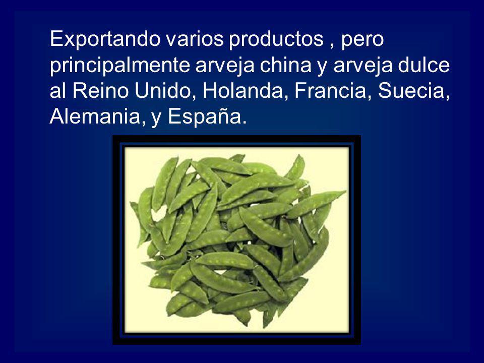 Exportando varios productos, pero principalmente arveja china y arveja dulce al Reino Unido, Holanda, Francia, Suecia, Alemania, y España.
