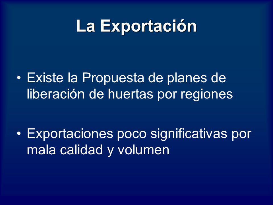 La Exportación Existe la Propuesta de planes de liberación de huertas por regiones Exportaciones poco significativas por mala calidad y volumen