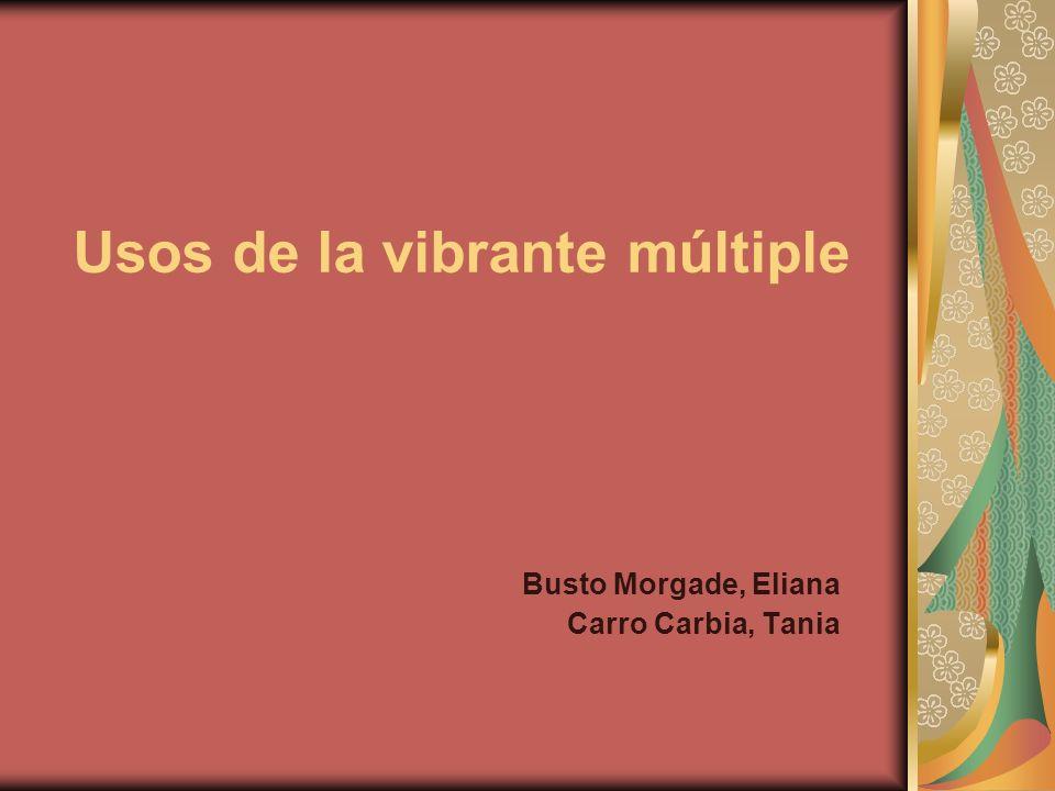 Usos de la vibrante múltiple Busto Morgade, Eliana Carro Carbia, Tania