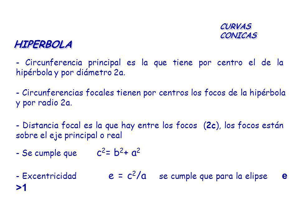 HIPERBOLA CURVAS CONICAS - Circunferencia principal es la que tiene por centro el de la hipérbola y por diámetro 2a. - Circunferencias focales tienen