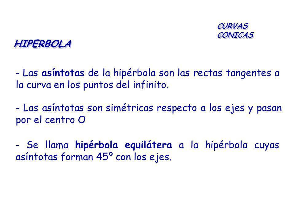 HIPERBOLA CURVAS CONICAS - Las asíntotas de la hipérbola son las rectas tangentes a la curva en los puntos del infinito. - Las asíntotas son simétrica