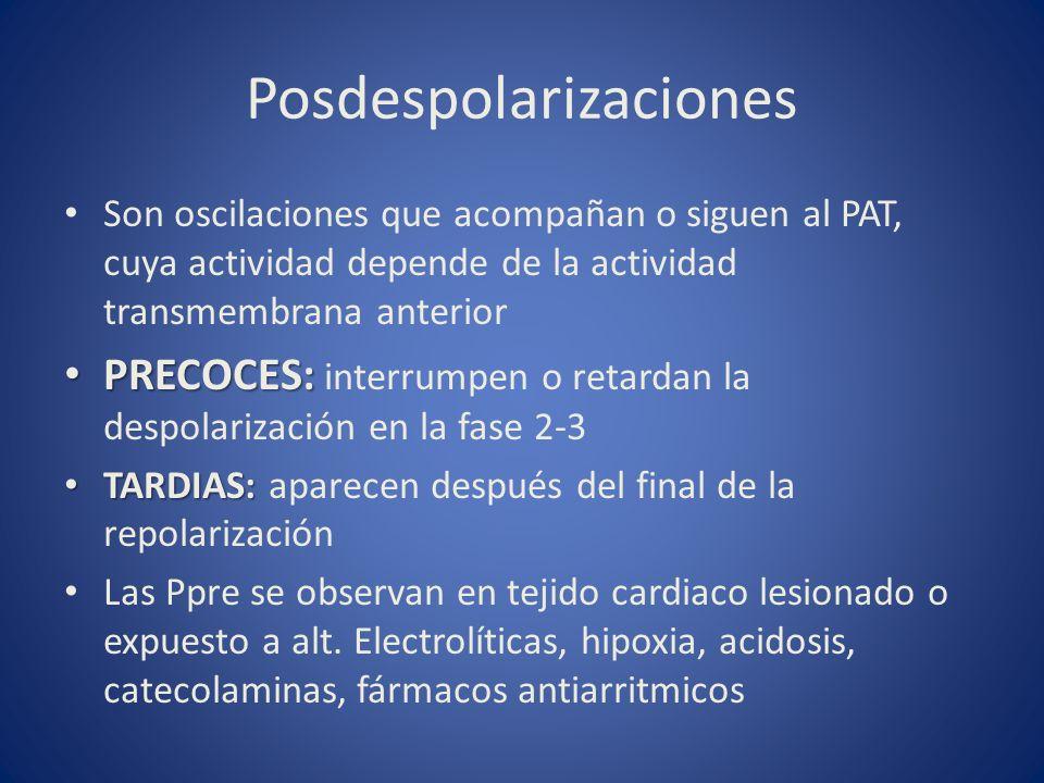 Posdespolarizaciones Son oscilaciones que acompañan o siguen al PAT, cuya actividad depende de la actividad transmembrana anterior PRECOCES: PRECOCES: