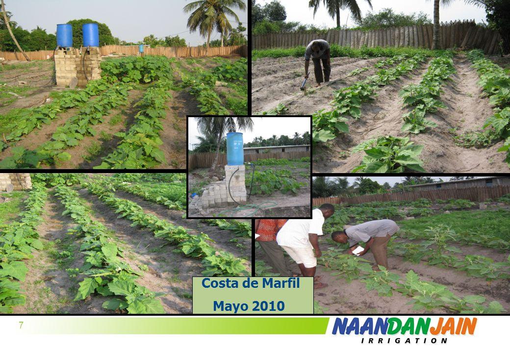 R-220 G-241 B-181 7 R-233 G-222 B-25 R-0 G-139 B-66 R-47 G-76 B-156 Logo colors Font & bullets R-154 G-203 B-60 Background 7 Costa de Marfil Mayo 2010
