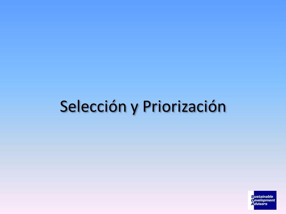 Selección y Priorización