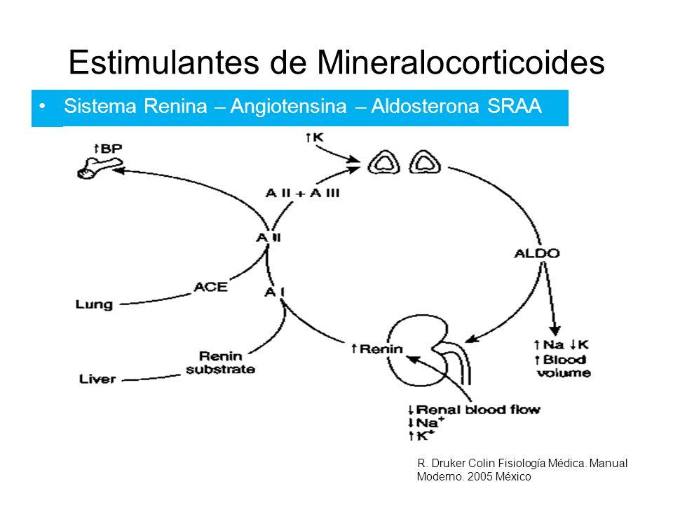 Estimulantes de Mineralocorticoides Sistema Renina – Angiotensina – Aldosterona SRAA R. Druker Colin Fisiología Médica. Manual Moderno. 2005 México