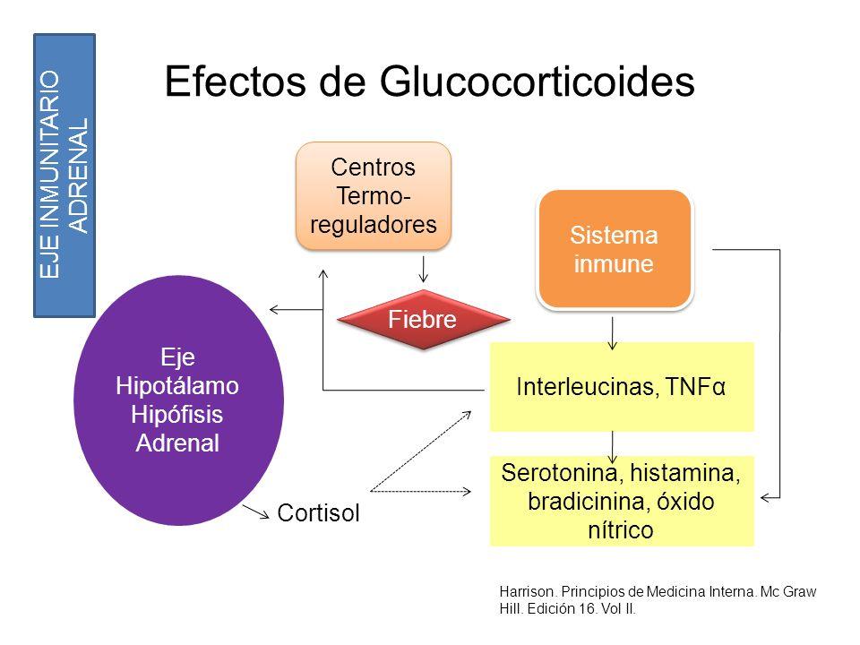 Efectos de Glucocorticoides Cortisol Eje Hipotálamo Hipófisis Adrenal Centros Termo- reguladores Centros Termo- reguladores EJE INMUNITARIO ADRENAL Si