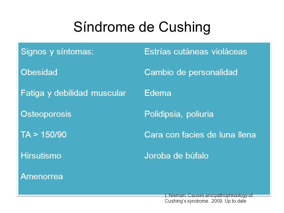 Síndrome de Cushing Signos y síntomas: Obesidad Fatiga y debilidad muscular Osteoporosis TA > 150/90 Hirsutismo Amenorrea Estrías cutáneas violáceas C