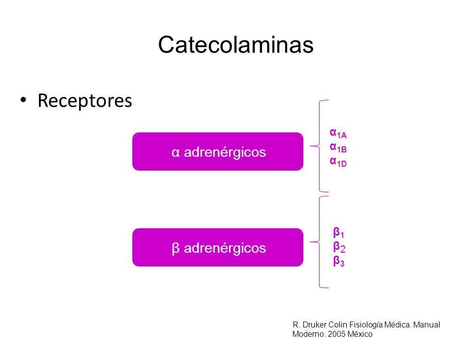 Estimulantes de Mineralocorticoides Renina y los mecanismos de control intrarrenales R.