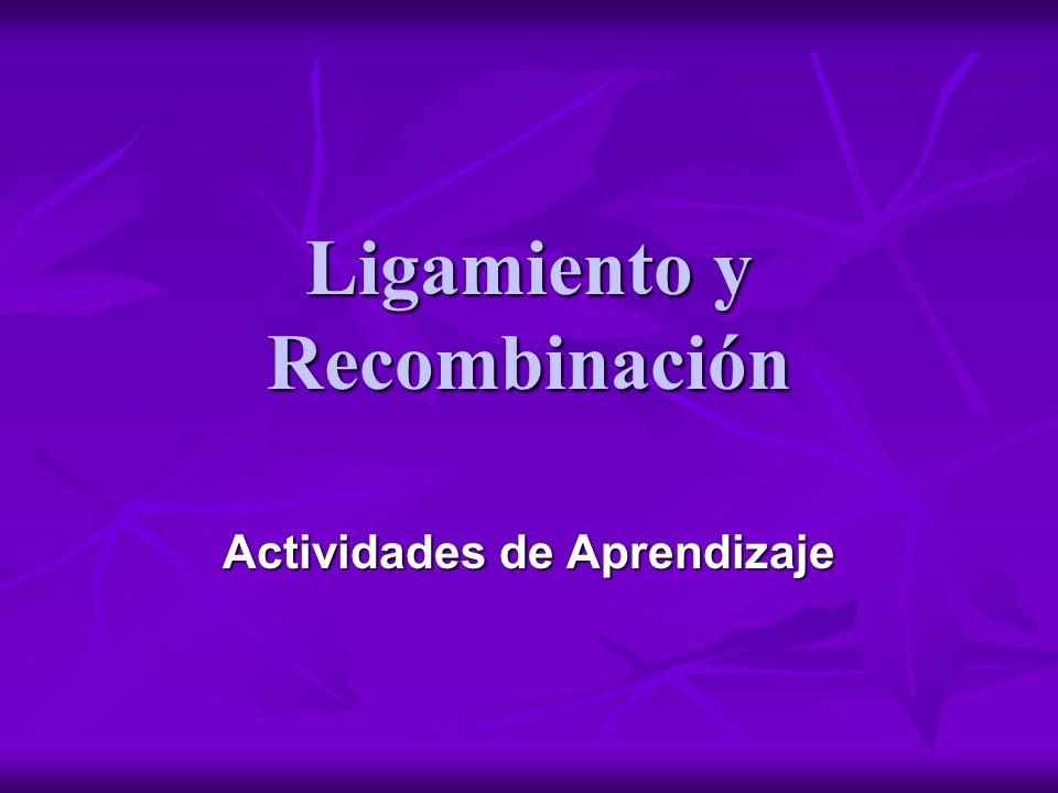 Px = Pollex Ejercicio Nro 1 px = no pollex R = pelaje rugoso r = pelaje normal Px_ R_ X px px rr 79 rugosos px px R_ 103 normales px px rr 95 rugosos pollex Px_ R_ 75 pollex Px_ rr r px r px a) px r recombinantes parentales recombinantes parentales