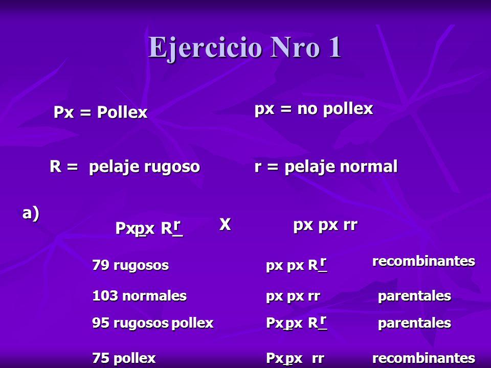 Ejercicio Nro 1 b) p = total recombinantes/ total fenotipos p = 79 + 75 / 352 = 0,4375 (recombinantes) 79 rugosos px px Rr 103 normales px px rr 95 rugosos pollex Px px Rr 75 pollex Px px rr recombinantesparentales recombinantes parentales Parentales = 1 - 0,4375 = 0,5625