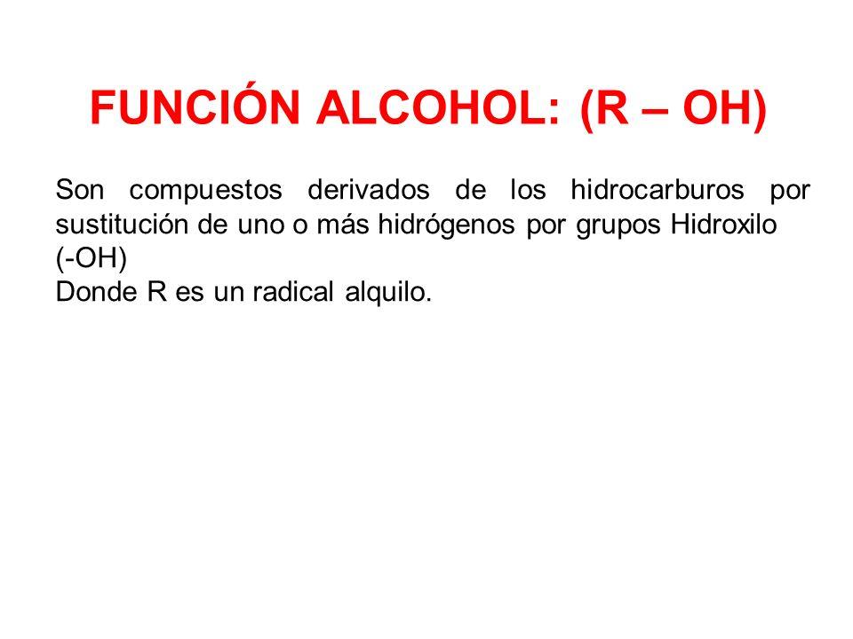 FUNCIÓN ALCOHOL: (R – OH) Son compuestos derivados de los hidrocarburos por sustitución de uno o más hidrógenos por grupos Hidroxilo (-OH) Donde R es