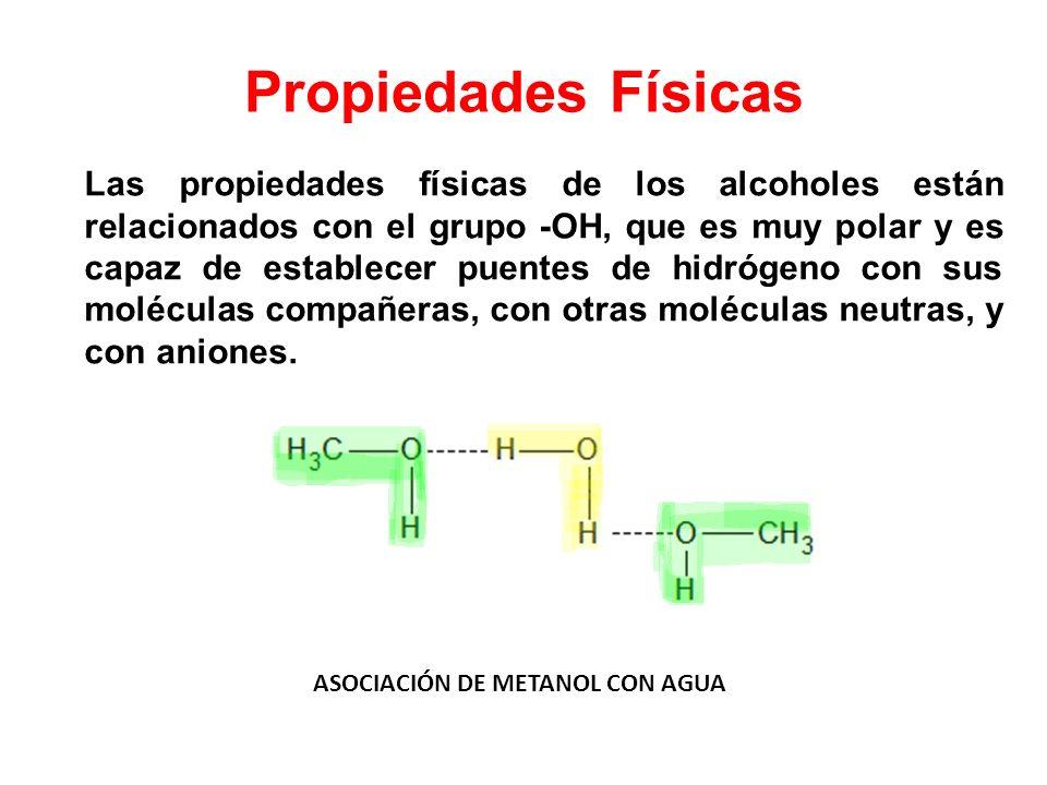 Propiedades Físicas Las propiedades físicas de los alcoholes están relacionados con el grupo -OH, que es muy polar y es capaz de establecer puentes de