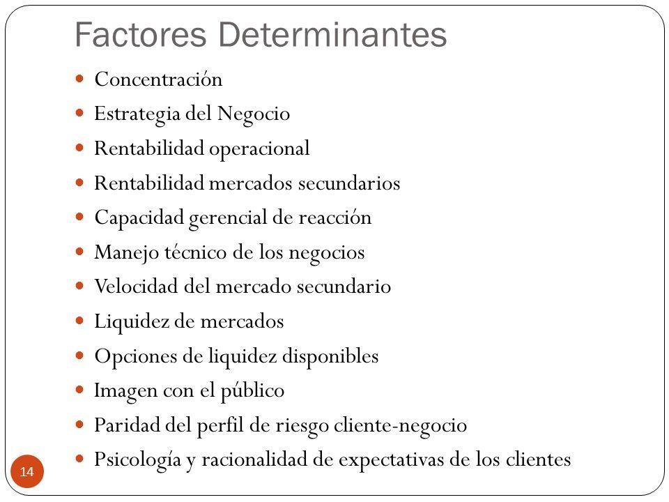 Factores Determinantes Concentración Estrategia del Negocio Rentabilidad operacional Rentabilidad mercados secundarios Capacidad gerencial de reacción