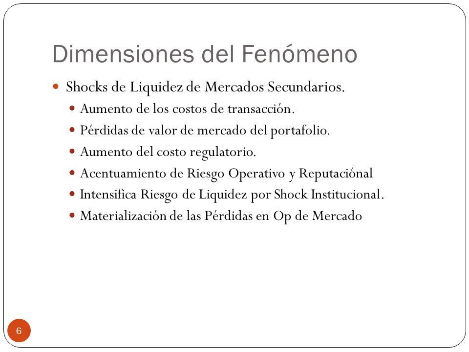 Dimensiones del Fenómeno Shocks de Liquidez de Mercados Secundarios.