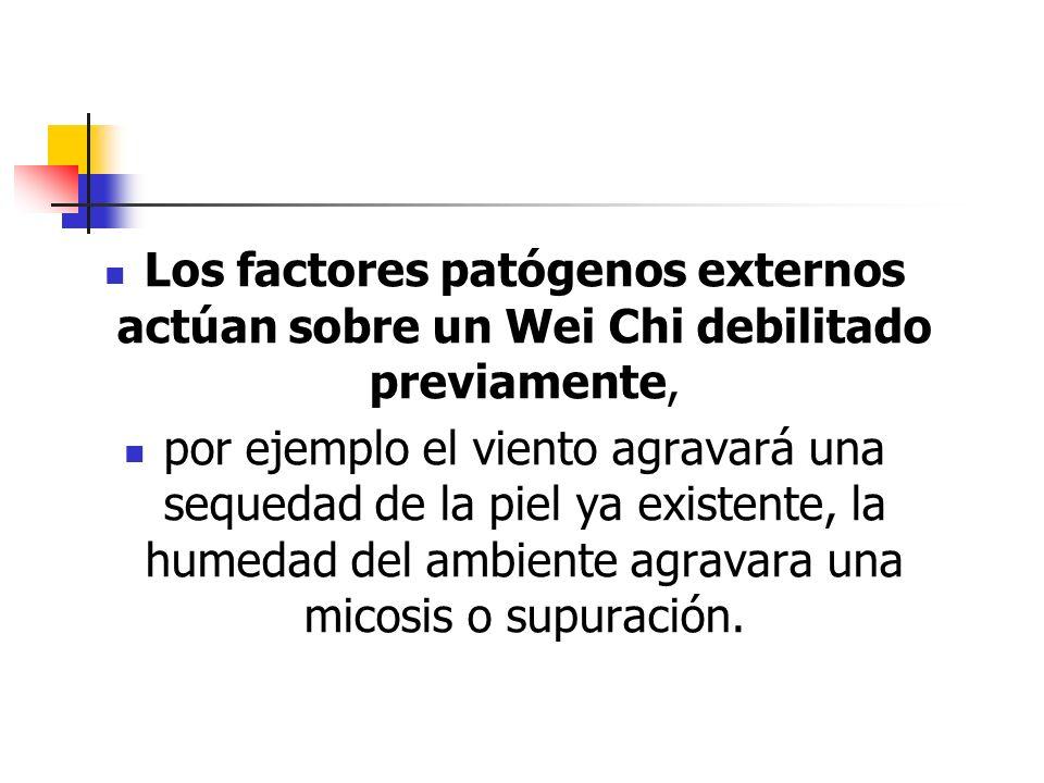 Los factores patógenos externos actúan sobre un Wei Chi debilitado previamente, por ejemplo el viento agravará una sequedad de la piel ya existente, l