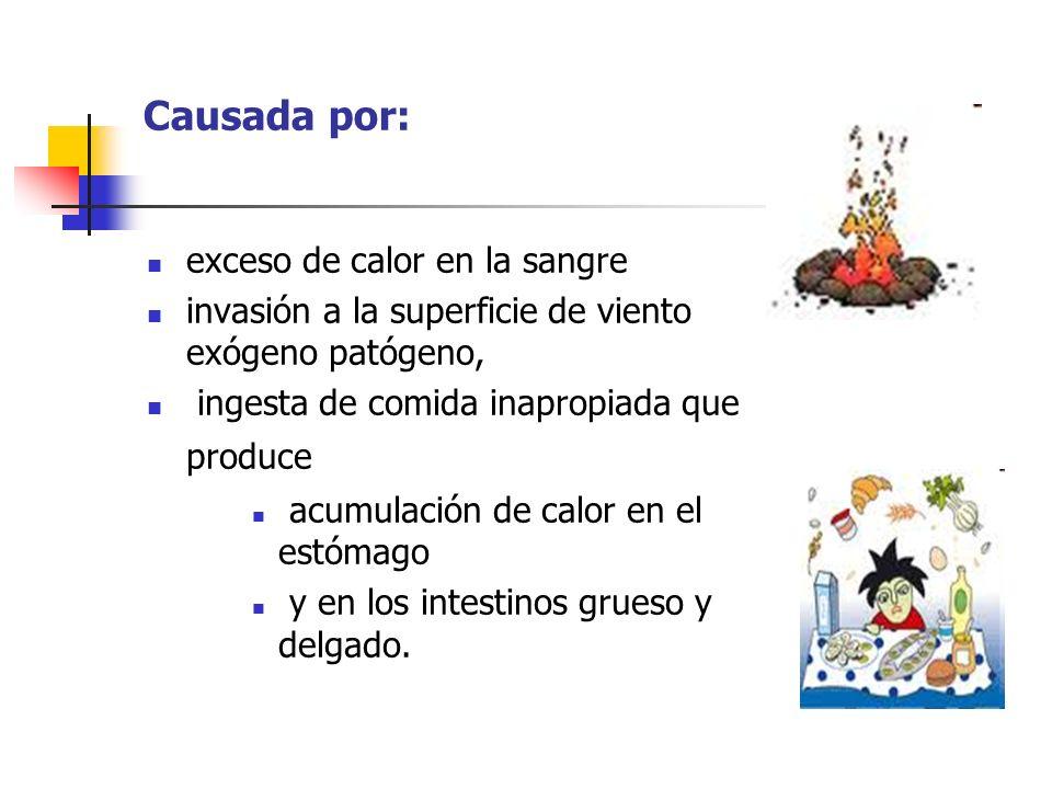 Causada por: exceso de calor en la sangre invasión a la superficie de viento exógeno patógeno, ingesta de comida inapropiada que produce acumulación d