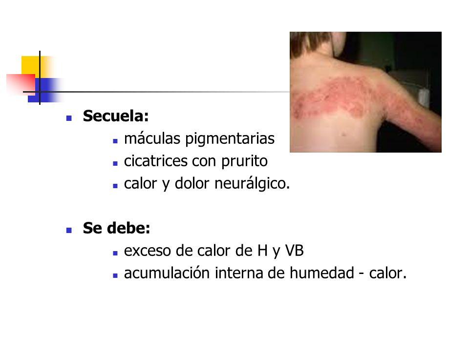 Secuela: máculas pigmentarias cicatrices con prurito calor y dolor neurálgico. Se debe: exceso de calor de H y VB acumulación interna de humedad - cal