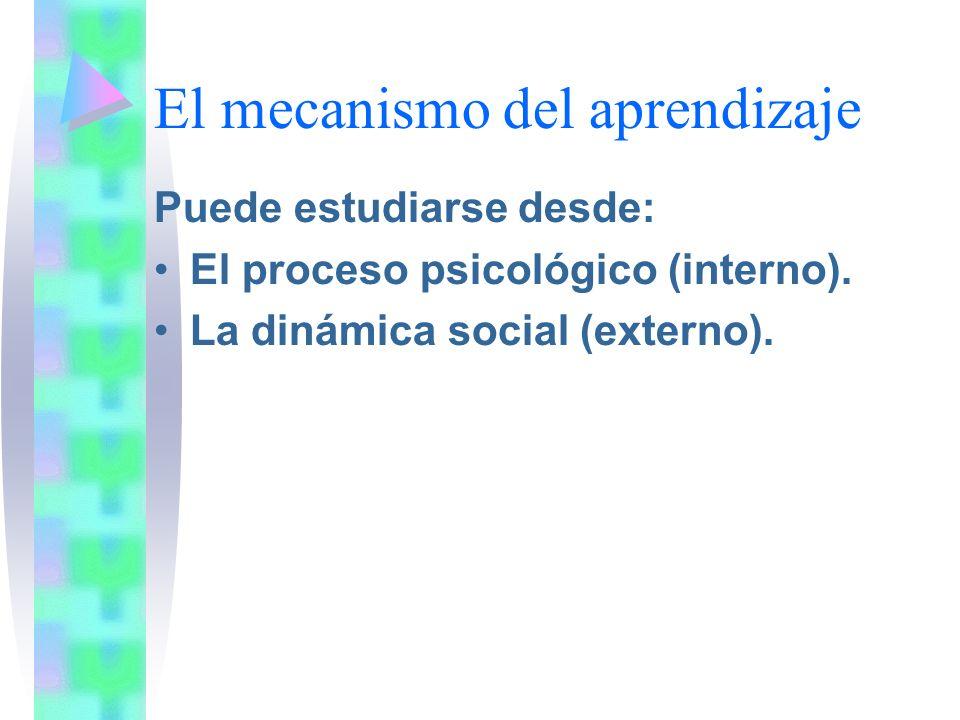 El mecanismo del aprendizaje Puede estudiarse desde: El proceso psicológico (interno). La dinámica social (externo).