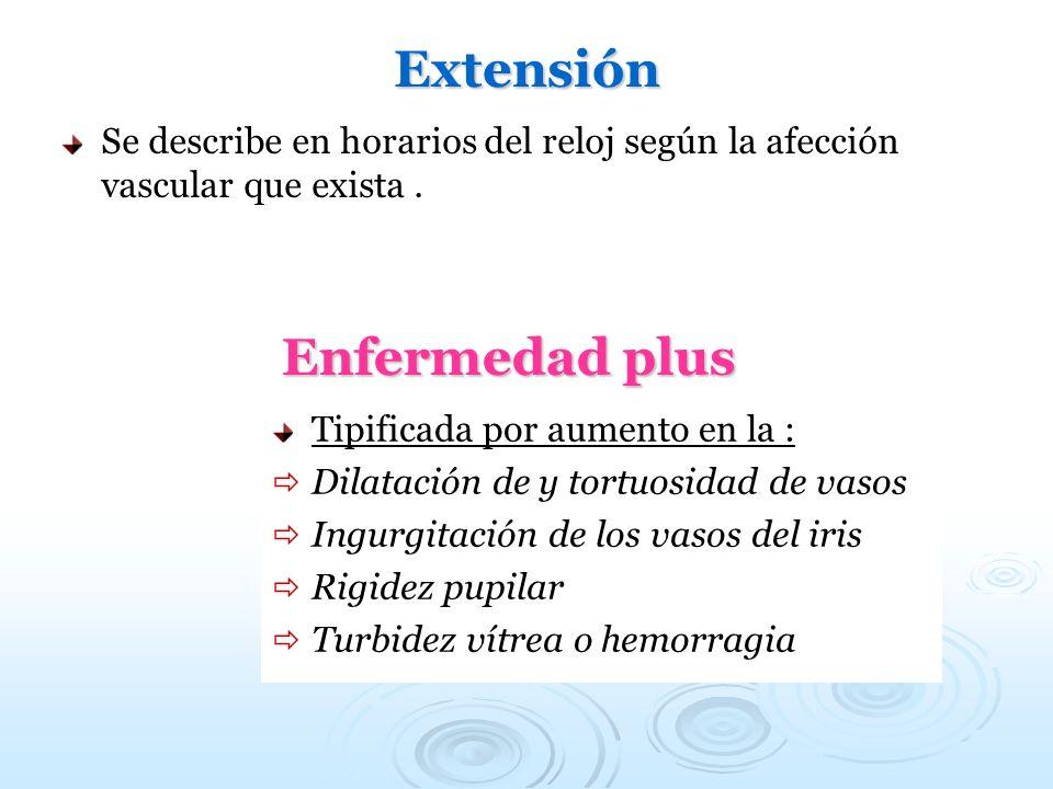 Extensión Se describe en horarios del reloj según la afección vascular que exista. Enfermedad plus Tipificada por aumento en la : Dilatación de y tort