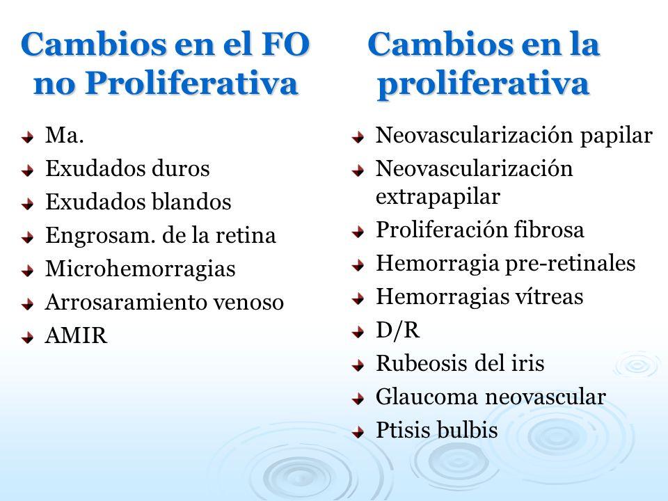 Cambios en el FO no Proliferativa Ma. Exudados duros Exudados blandos Engrosam. de la retina Microhemorragias Arrosaramiento venoso AMIR Cambios en la