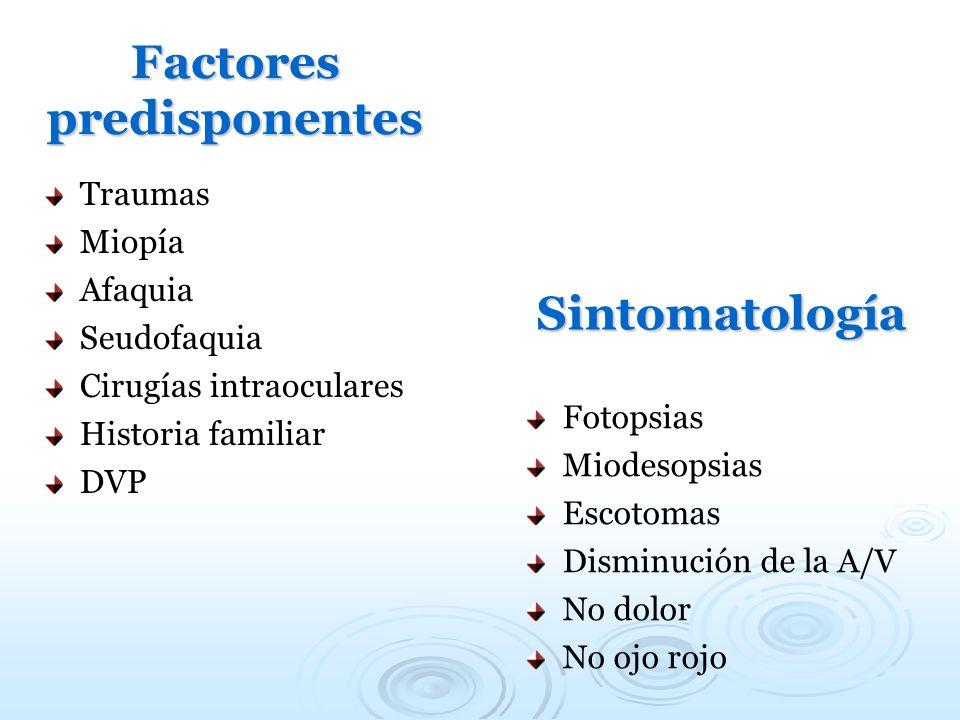 Factores predisponentes Traumas Miopía Afaquia Seudofaquia Cirugías intraoculares Historia familiar DVP Sintomatología Fotopsias Miodesopsias Escotoma